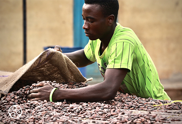Cocoa horizons; eerlijke chocolade